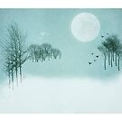A Winters Tale by M.S. Photography/Art