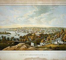 Vintage Pictorial Map of Georgetown (1855) by BravuraMedia