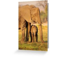 A Mother's Protection Greeting Card