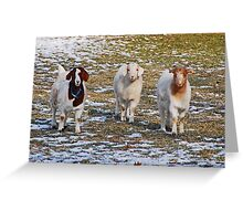 The Three Goats Greeting Card