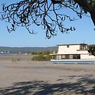 One of many Houseboats left on the Mud Flats! Tin Can Bay. Qld. by Rita Blom