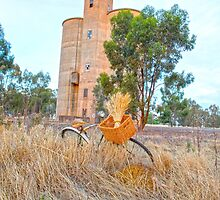 Bike riding near the old wheat silo....... by jenkeating1