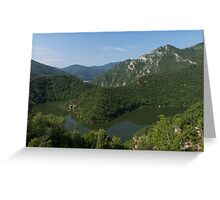 Green, Green and Green - the Water, the Mountains, the Trees Greeting Card
