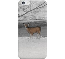 When Food Is Scarce iPhone Case/Skin