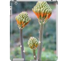 Aloes are blooming iPad Case/Skin