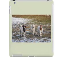 The Three Goats iPad Case/Skin