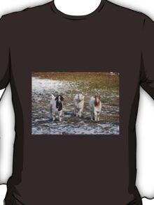 The Three Goats T-Shirt