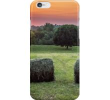 End Of Summer iPhone Case/Skin
