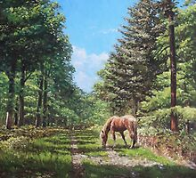 Horse in New Forest by martyee