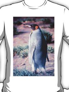 King Penguin on Heard Island T-Shirt