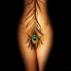 Peacock feather by fotowagner