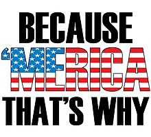Because 'MERICA That's Why by artvia
