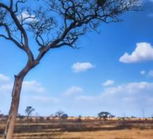 Tree in the Serengeti Sticker