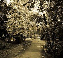Entering to Wonderland by victorramon