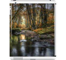Just Enough Light ~ Whittaker Creek ~ iPad Case/Skin