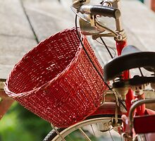 bicycle whit baskets by spetenfia