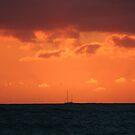 TOMORROW  IS  ON THE HORIZON by fsmitchellphoto