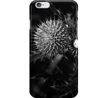 carduus iPhone Case/Skin