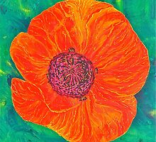 Red Poppy by Christine Chase Cooper