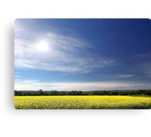 Sun Halo Over Canola Field Canvas Print
