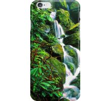 PLACE OF A THOUSAND DRIPS. iPhone Case/Skin