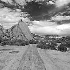 Rock Road by Eileen McVey