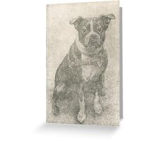 Henry the Boston terrier  Greeting Card