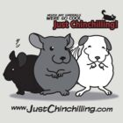 """""""Just Chinchilling!"""" 2013 cover by FreakShop404"""
