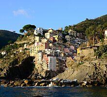 Riomaggiore in Cinque Terre, Italy by avresa