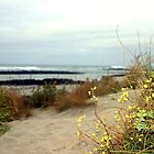 Path to the Beach by Chris Chalk