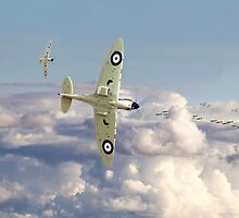Spitfire - '... to so few' by warbirds