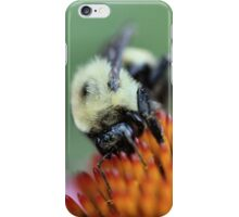 Hurry up! Fall is here! iPhone Case/Skin