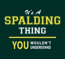 It's,  A,  SPALDING,  thing,  you,  wouldn't,  understand,   by satro