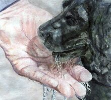 Watering the Dog by Edrie Bays