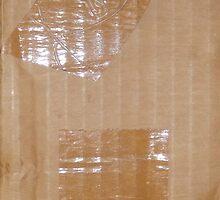RECYCLED BOX (Damaged) by leethompson