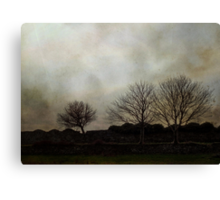 Otherwise inclined Canvas Print