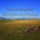 Waterton National Park - Where Prairies Meet Mountains by Vickie Emms