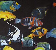 OCEANS MENAGERIE (The Reef) by leethompson