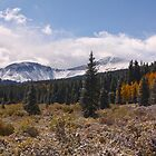 Last day of Summer in the Colorado high country by Jeff Chavez