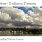 Spring Bay Harbour - Triabunna, Tasmania by Paul Gilbert