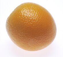 Florida Orange  by BravuraMedia