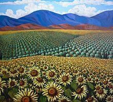 Symphonie de Provence by Jude Woodland