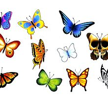 Butterfly Flash by Courtney Pretlove