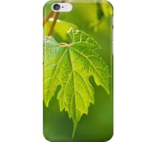 Green Leaf Fox Grape iPhone Case/Skin
