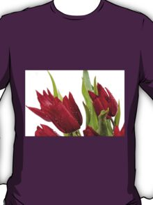 Red tulip heads sprinkled with water  T-Shirt
