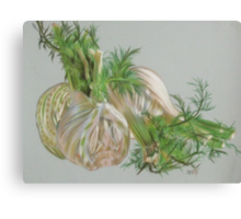 Fennel Canvas Print