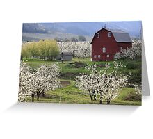 Blossoms For Miles Greeting Card