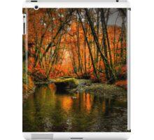 I'll Take It ~ Fall Colors On Whittaker Creek ~ iPad Case/Skin