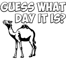 Guess What Day it Is? Hump Day Camel Photographic Print