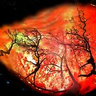 On Fire by Igor Zenin